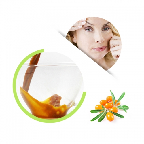 Seabuckthorn Concentrate Juice