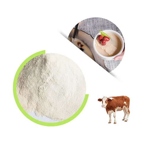Healthdream | 4 tips for picking good quality water-soluble bovine collagen powder
