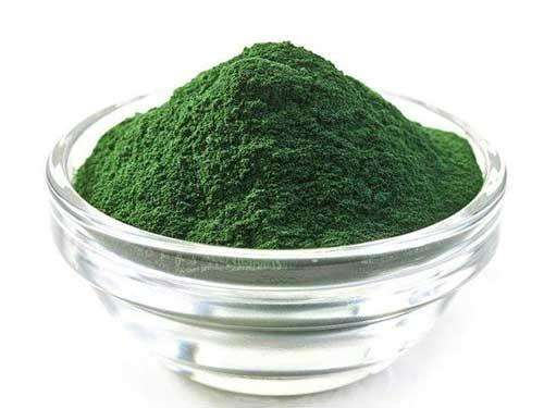Healthdream | How Dose Chlorella Powder Detoxified