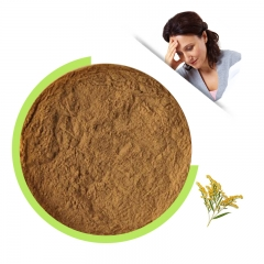 Solidago raw powder
